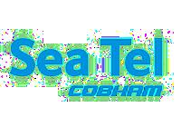BmTec Seatel Cobham logo